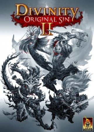 Divinity: Original Sin 2 Early Access
